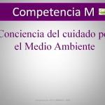 Competencia M